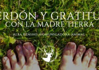PERDON Y GRATITUD CON LA TIERRA