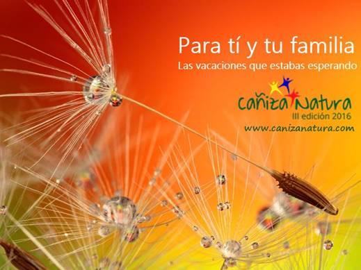 dandelion-par ti y tu familia 519x389